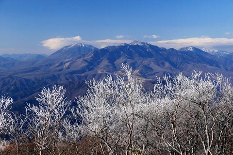 冬枯れの森、霧氷の森!(高原山山塊、釈迦ヶ岳)