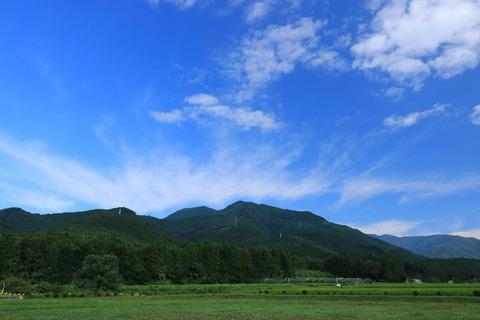 栃木百名山:安戸山で花探し!
