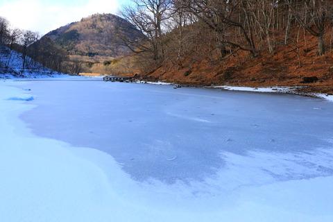 凍てつく大沼園地を訪ねる!