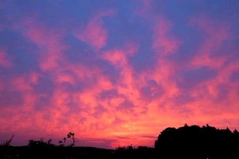 劇的な夕焼けを見たよ。夕焼け散歩!(05月08日)