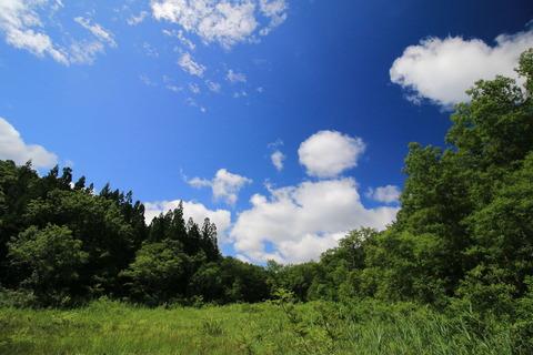 矢の原湿原を散策する!(福島県昭和村)