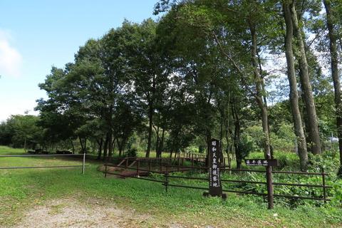 笹平湿地を歩いてみる!(栃木県那須町)