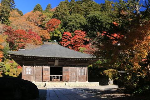 臨済宗妙心寺派の名刹、雲巌寺の紅葉を楽しむ!