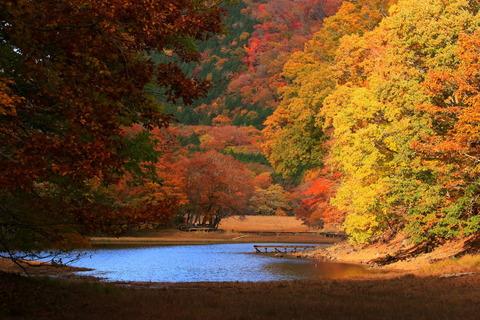秋色溢れる大沼園地!