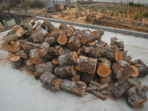 来冬のための薪づくり(薪割り作業№4)