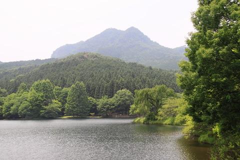 古賀志山(栃木百名山:コアジサイ咲く登山道!)