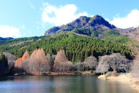 古賀志山(栃木百名山・二枚岩から山頂へ!)