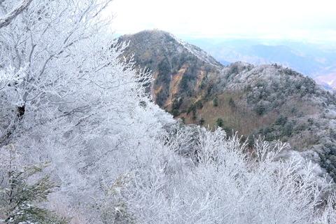 釈迦ヶ岳(栃木百名山:山頂にて霧氷に出会った初冬の山~ぁ(^_-))