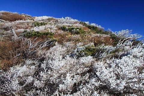 冬の華咲き誇る那須登山!