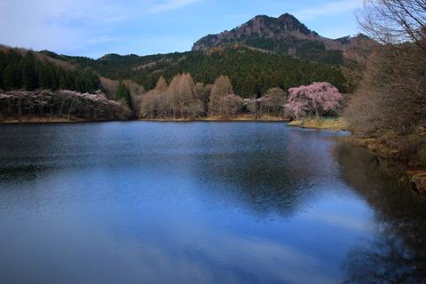 古賀志山(栃木百名山:春のお花を求めてロングトレイル!)