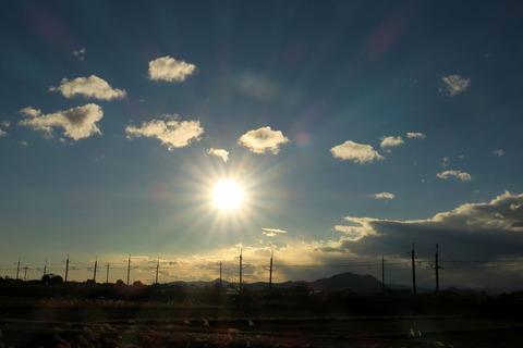 夕焼け散歩:愛犬たちと影遊び。!(夕日の見える丘にて)