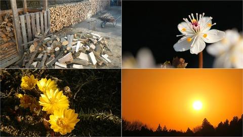来冬のための薪づくり&夕焼け散歩(R03.02.21)