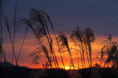 南岸低気圧前の夕焼け散歩!(R03.01.11)