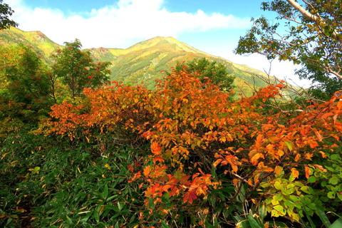 初秋の飯豊連峰を歩む(1日目:大日杉~本山~御西避難小屋)