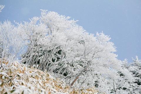 霧氷が舞う釈迦ヶ岳(高原山山塊)