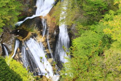 霧降川自然研究路(栃木県日光市、百高棚田から霧降の滝まで)