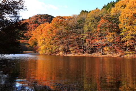 大沼園地で秋色収集!
