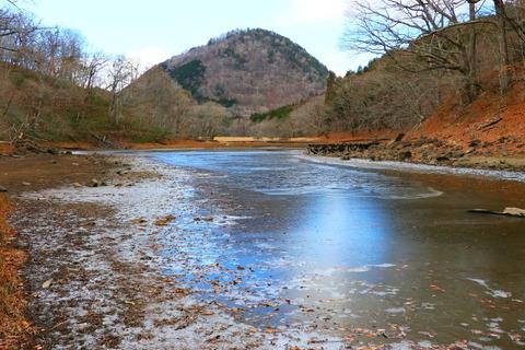 初冬の森を歩む!(栃木県那須塩原市:大沼園地)