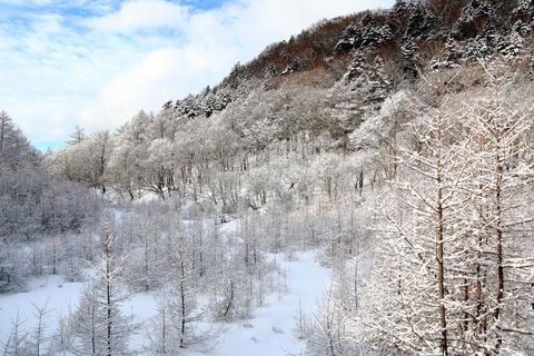 静寂の奥日光(切込湖・刈込湖、スノーハイキング!)