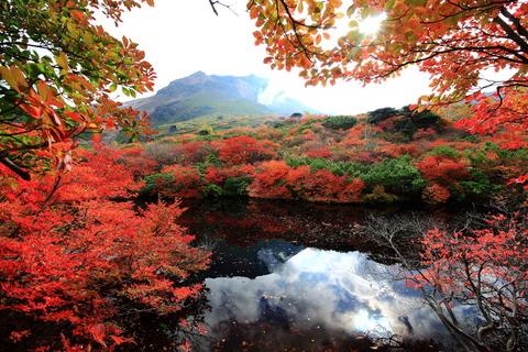 裏那須をロングトレイルにて秋の樹林帯を堪能した!