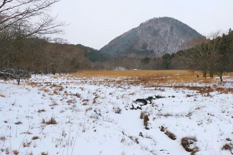 雪を従えて、冬の大沼園地!