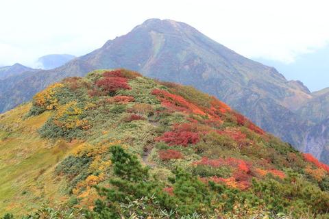 越後駒ヶ岳:駒の小屋に宿泊して初秋を楽しむ!