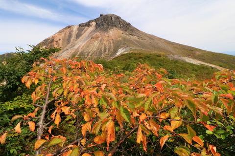 初秋のお山で秋色を集めてみました。那須:南月山&姥ヶ平