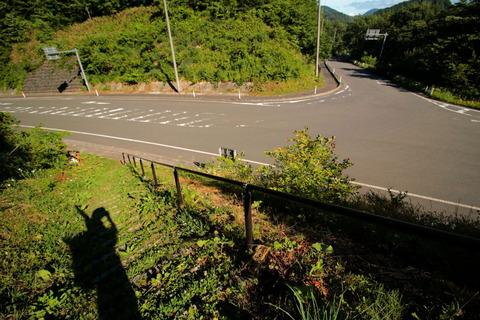 焼石岳_20.06.17_737