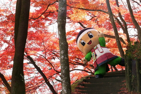土佐楓の御殿山公園でゆるキャラ与一くんを目撃!