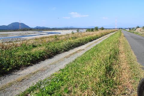 ツリガネニンジンと小さな秋!(鬼怒川堤防沿いを散策)