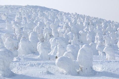 蔵王山:日本百目山でアイスモンスターに出逢った(*^_^*)