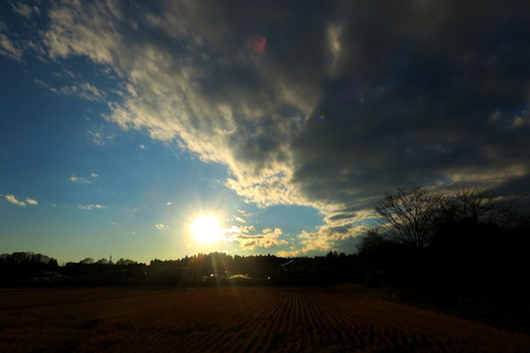 夕焼け散歩!(12月17日)