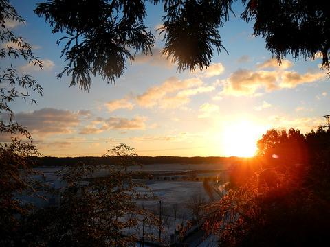 里山散策(里山の森~塩田地区~倉掛:冬の陽だまりハイク!)
