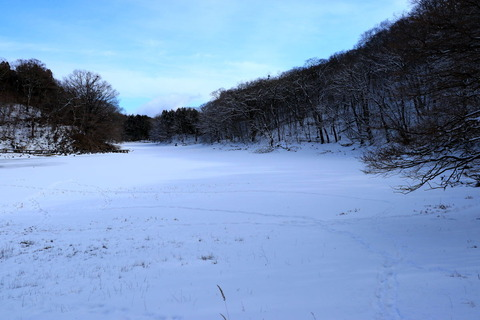 高原山山塊:大沼園地は真っ白な気持ちで歩む道!