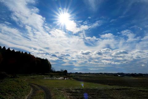 里山散策:晩秋の森を歩く!