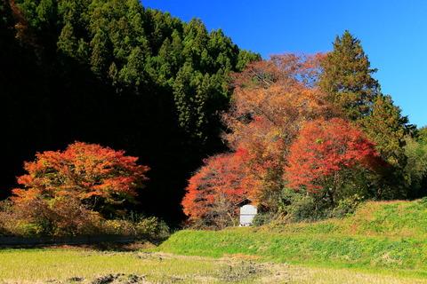 八溝山地:秋の里山散歩(栃木県大田原市南方)