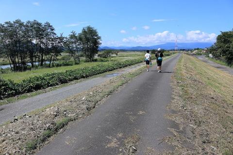 鬼怒川堤防沿いにて、爽やかな風を感じて歩いた!