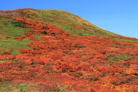 焼石岳で秋色に酔う!(日本二百名山)