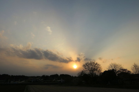 夕焼け散歩!(4月8日)