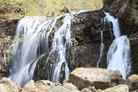 早春の渓谷を散策する!・栃木県矢板市、高原山にて