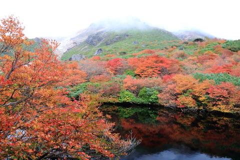 美しき秋の裏那須!