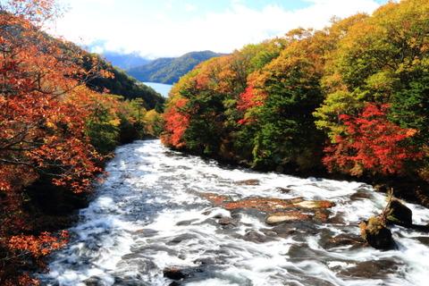 秋も深まる、日光戦場ヶ原を散策!