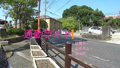 Snapshot_5