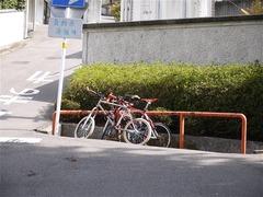 s-P1050944