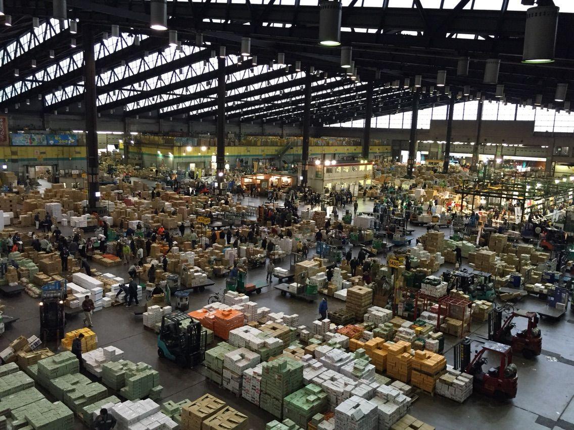 豊洲市場への移転が白紙撤回なら大田市場を代替地として暫定使用か [無断転載禁止]©2ch.net->画像>5枚