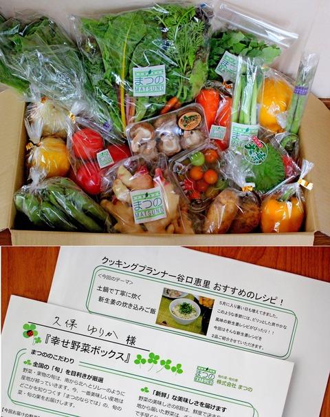 まつの野菜②1