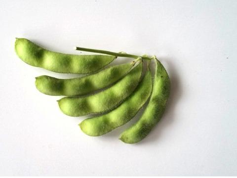 枝豆 カット前