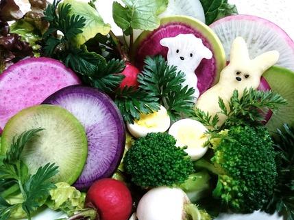 カラフル根菜7