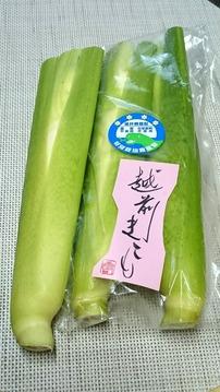 マコモダケ5