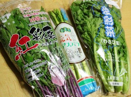 民野 野菜画像